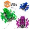 Hexbug-ant-kopen